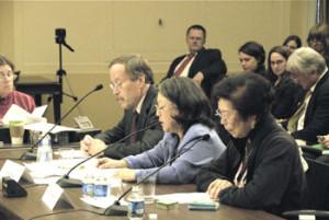 Japanese Latin American Panel