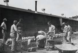 sailor internees garden