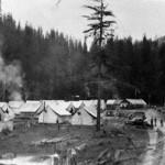 numerous tents in forest clearing